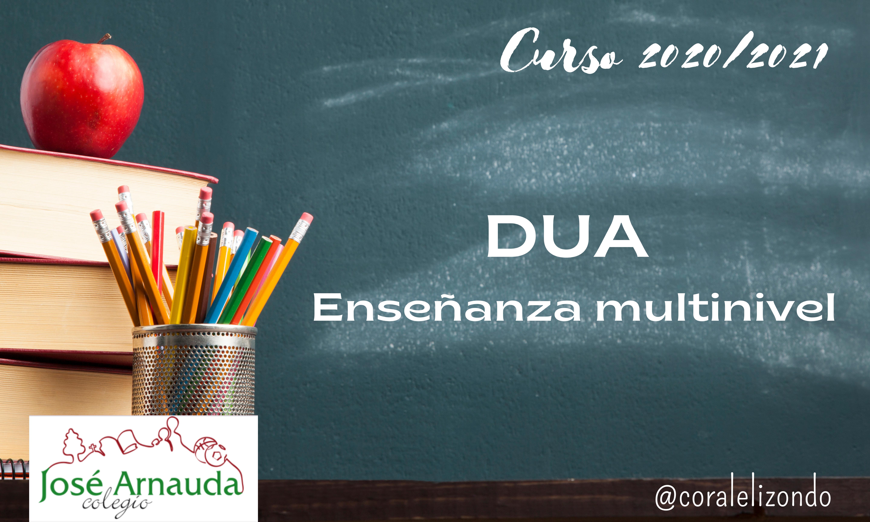 Diseño Universal para el Aprendizaje. Colegio José Arnauda